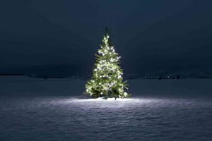 Resizing Your Holiday Expectations While Grieving