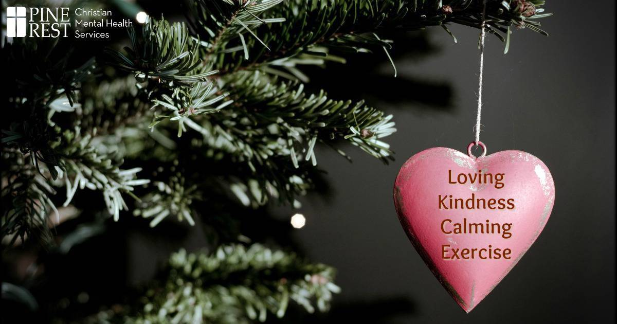 Heart shaped Christmas ornament hanging from tree branch