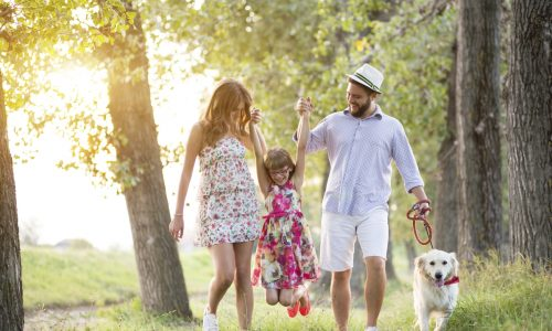 Young family walking in nature on a summer day with their dog